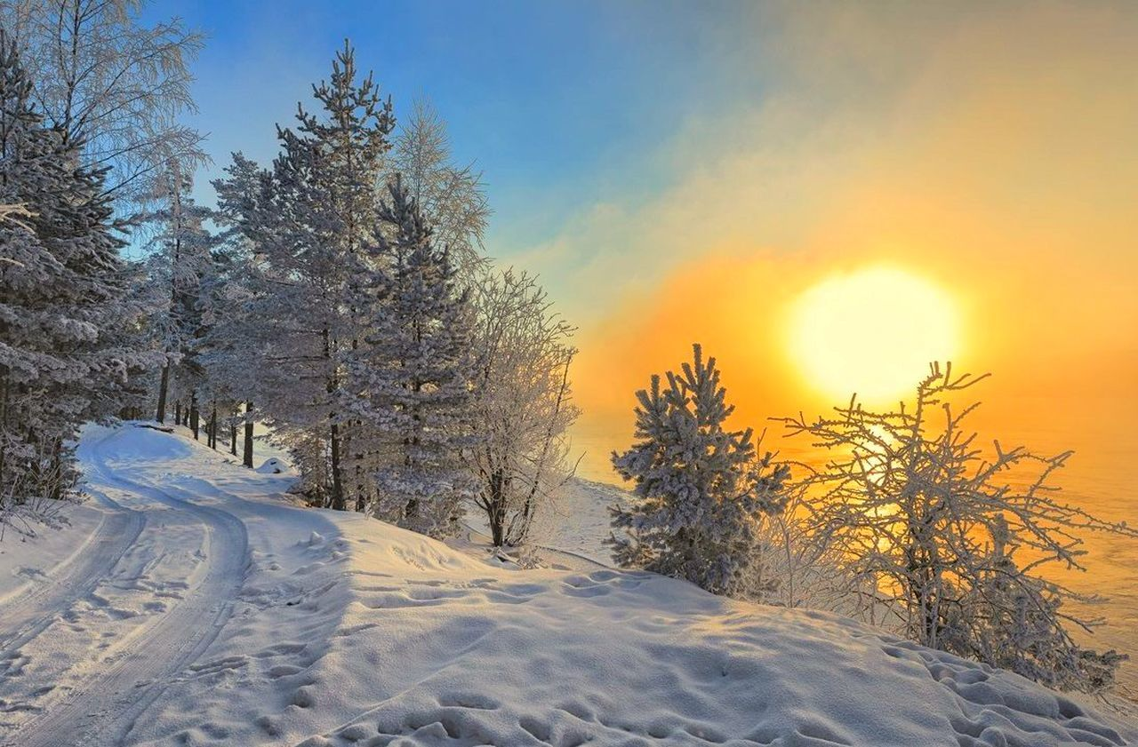winter, snow, cold temperature, tranquil scene, nature, white color, scenics, sky, beauty in nature, tree, no people, cloud - sky, landscape, outdoors, sunlight, tranquility, day, forest, snowing, freshness