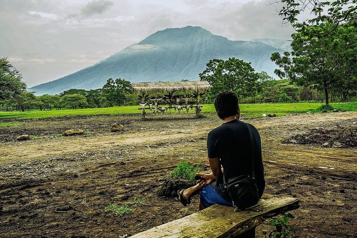 Lost In The Landscape One Person Rear View Only Men People One Man Only Outdoors Tree Day Landscape Beauty In Nature Baluran Balurannationalpark Mountain Travel Walking Men Plant Green Color Connected By Travel First Eyeem Photo EyeEmNewHere