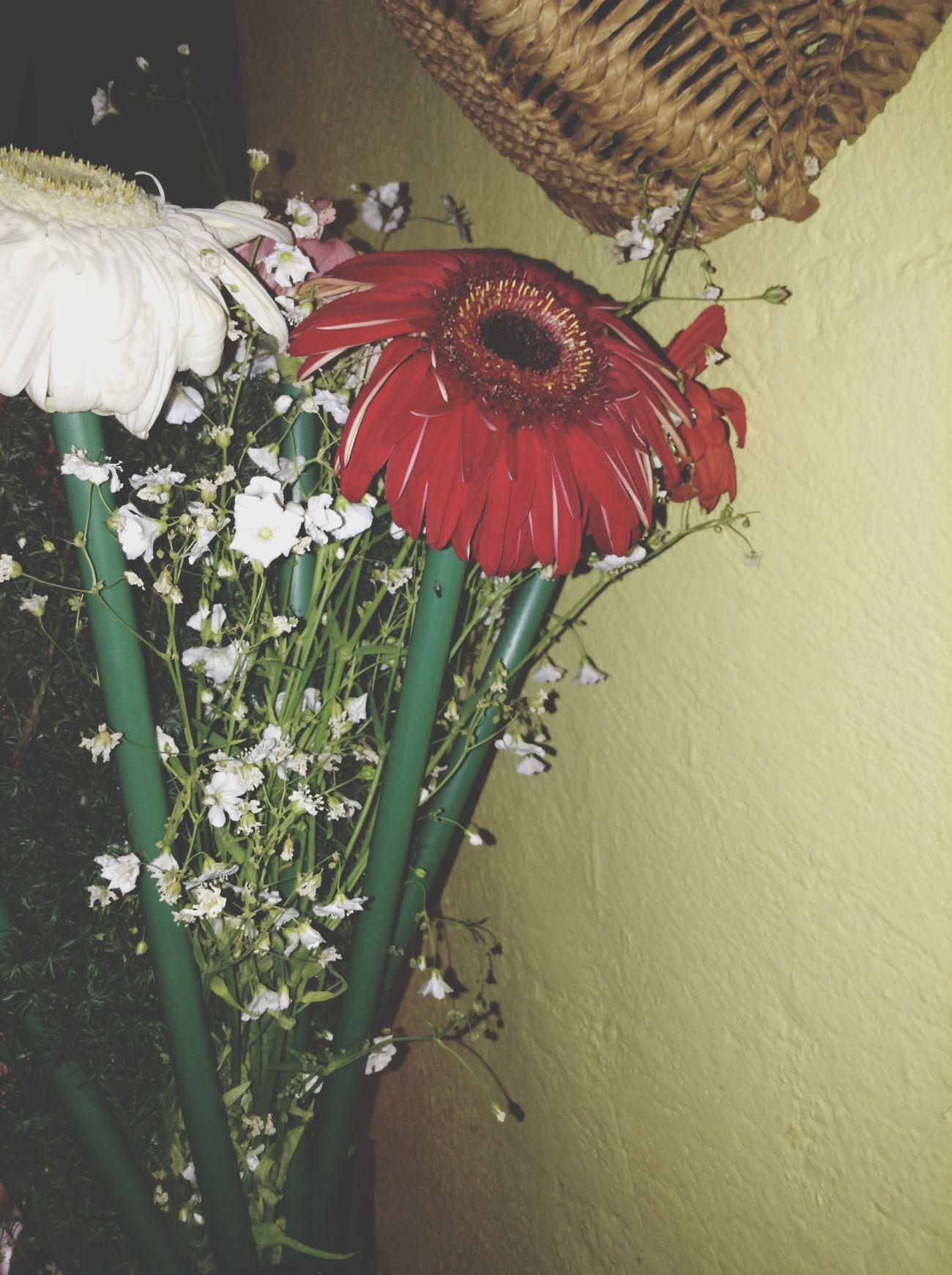 Flowers. ❤️?