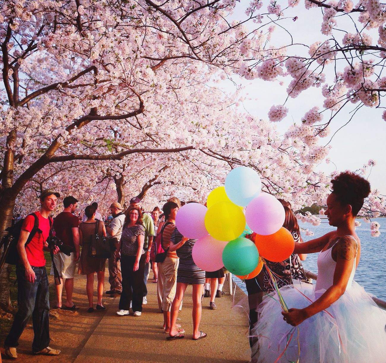 Cherry blossoms, balloons, and tutus 😍🌸🎈💃🏾 Cherry Blossoms Spring