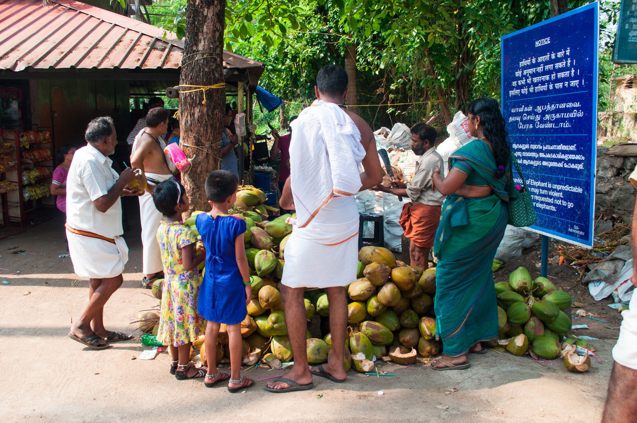 COCCO Coconut Famiglia Family Fruit India Indiani Indians  Kerala People Persone Up Close Street Photography The Photojournalist - 2016 EyeEm Awards