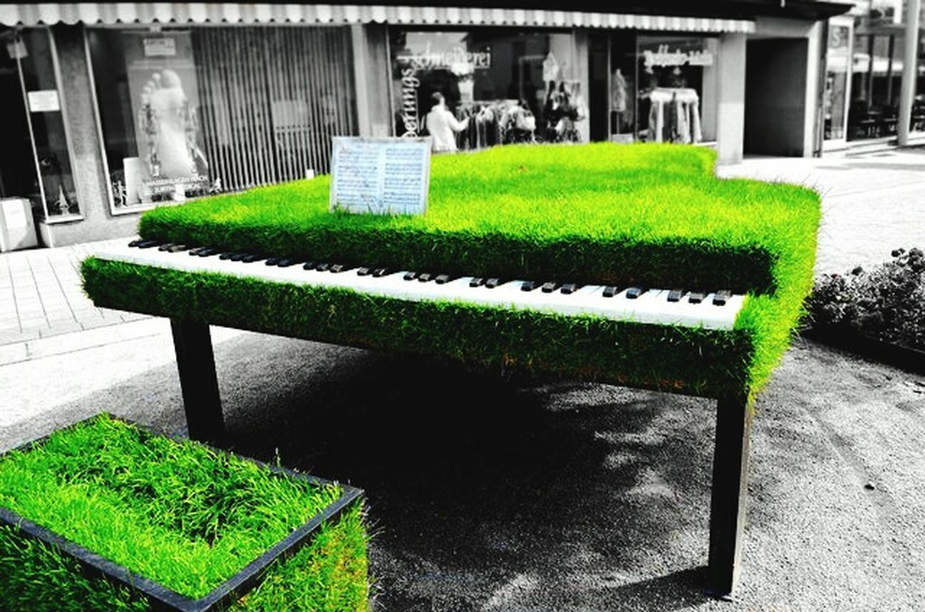 new pic Piano Moments Piano Grass Green Color Grass Plant No People Nature Day WeekOnEyeEm ArtWork First Eyeem Photo Highlife Music Mobilephotography Keyboard Colorful Modern Art Weed Beauty In Nature Green