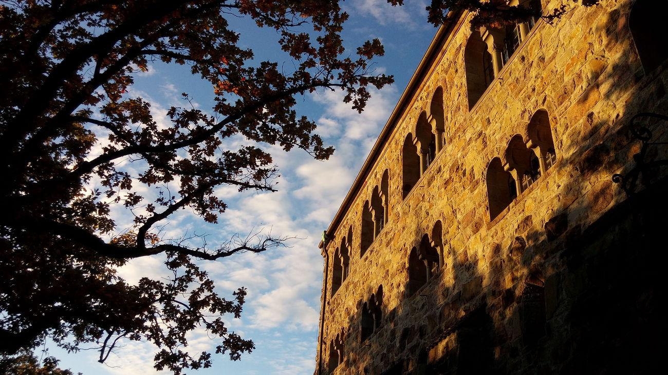 Castle Autumn🍁🍁🍁 Autumn Colors Autumn History Architecture Weinheim Landscape Nature