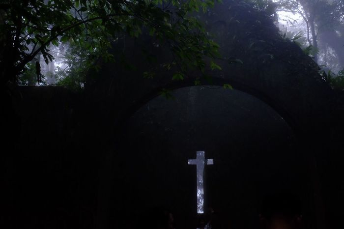 Lost In The Landscape Religion Cross Spirituality Crucifix Cemetery Tree No People Grave Memorial Statue Place Of Worship Day Outdoors Nature Bavi Hanoi Vietnam  Church Abandoned Church