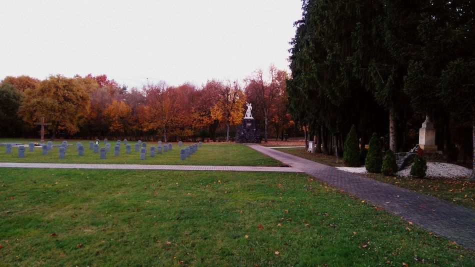 Made by Sony Xperia M4 Aqua Autumn Autumn Colors Autumn Leaves Cemetery German Soldiers Graves Gravestone Graveyard Hungarian Flag Hungarian Soldiers Italian Soldiers Military Cemetery Russian Soldiers Soldiers Soldiers' Graves Statues Szombathely Tree Trees World War World War II