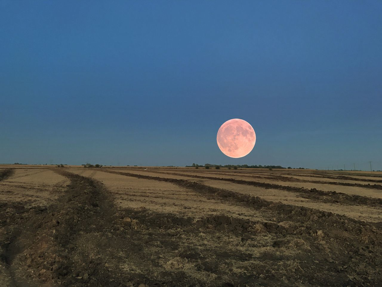 Harvest Moon Clear Sky Tranquil Scene Landscape Tranquility Blue Scenics Copy Space Beauty In Nature Nature Moon Non-urban Scene Outdoors Remote Majestic Horizon Over Land Countryside Solitude Country Road Exploration No People
