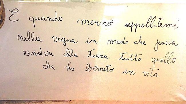 Words Wine Locorotondo Puglia Salento Italy Phrases Phrase Of The Day Wine Lovers Wine Time