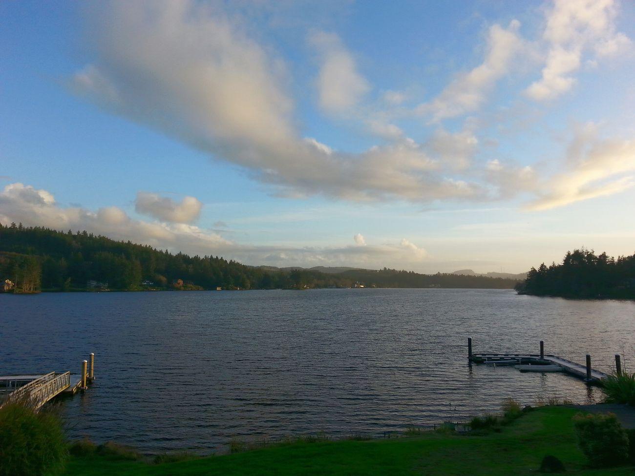 Lake PNW Sunnydays Backyard Nature