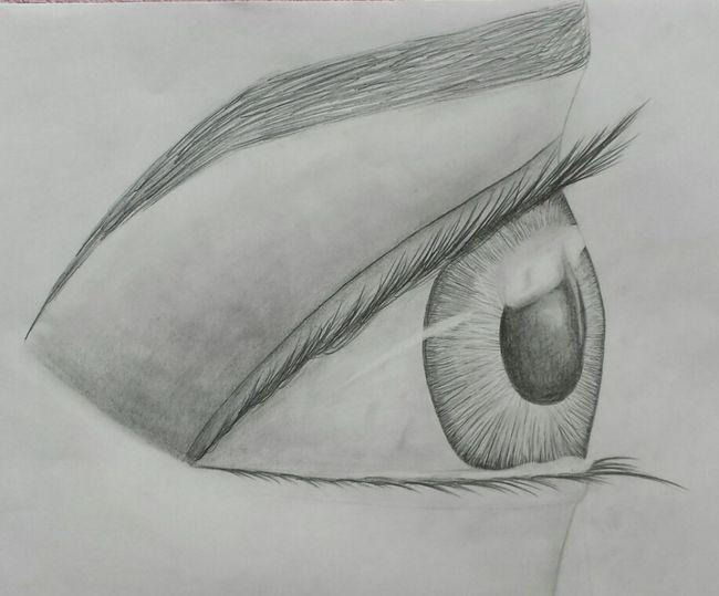 Eye Art Pencil Drawing