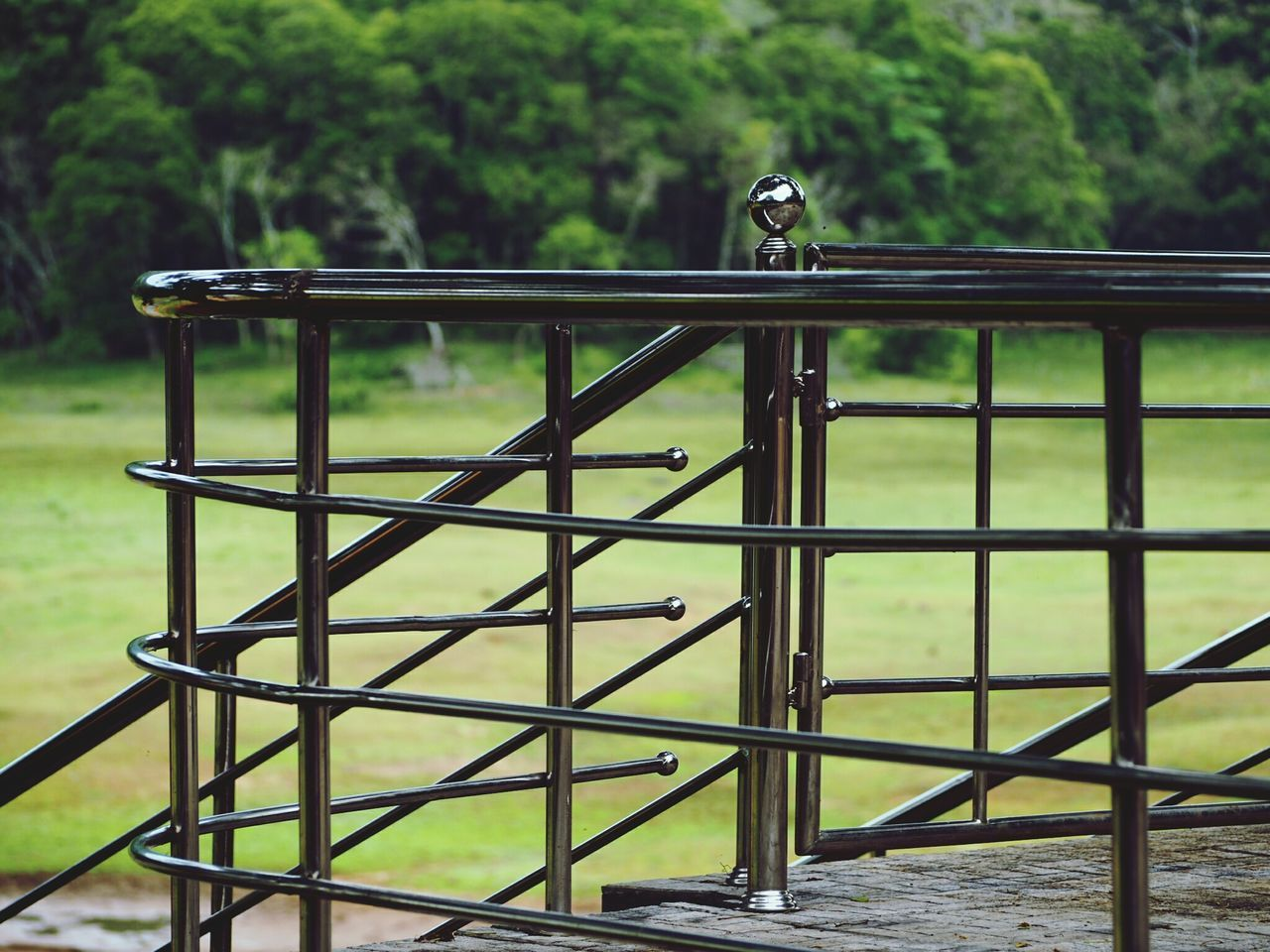 animal themes, bird, one animal, animals in the wild, metal, railing, animal wildlife, outdoors, day, focus on foreground, no people, perching, nature, close-up