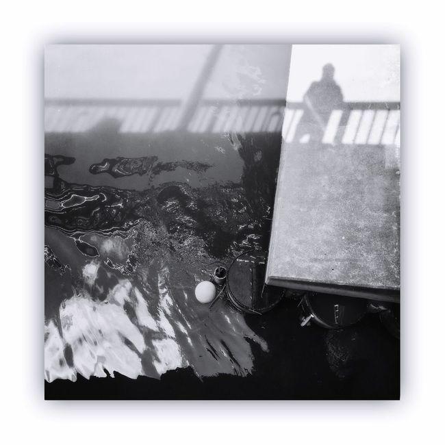 「川を橋の上から撮る」 I Took The Rivers From On The Bridge River Bridge Monochrome_life Monochrome Blackandwhite Light And Shadow