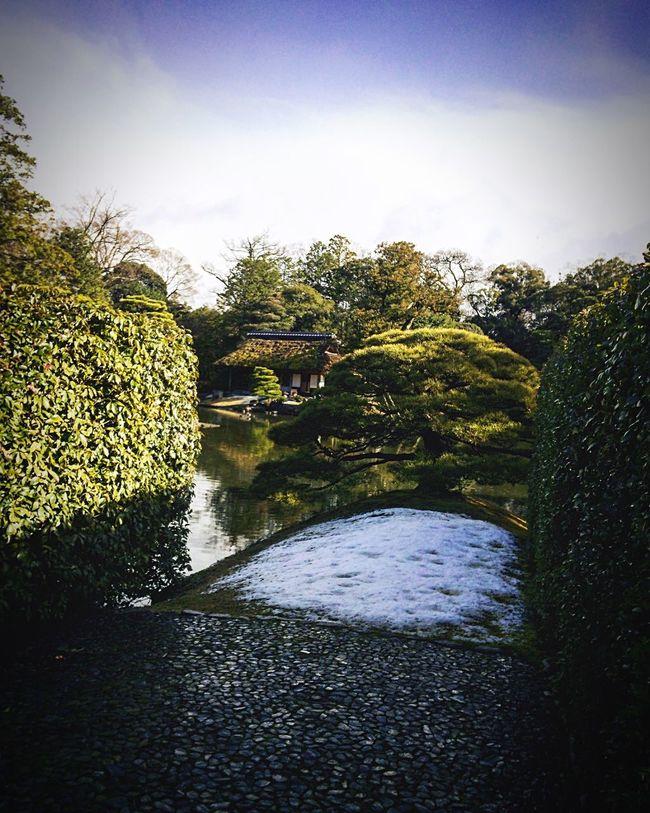 桂離宮 京都 Kyoto 庭園