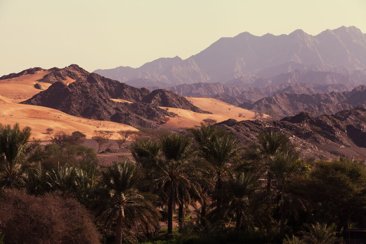 The Great Outdoors - 2017 EyeEm Awards Fujairah Mountain Range Desert United Arab Emirates Date Palm Tree Desert Landscape