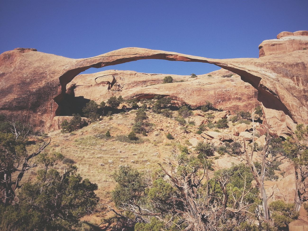 The Landscape Arch is the largest arch in the world. It's tough to make out the scale, but the arch is just over 300 feet in length. Arches National Park, Utah. RoadTripxUSA Arches Utah