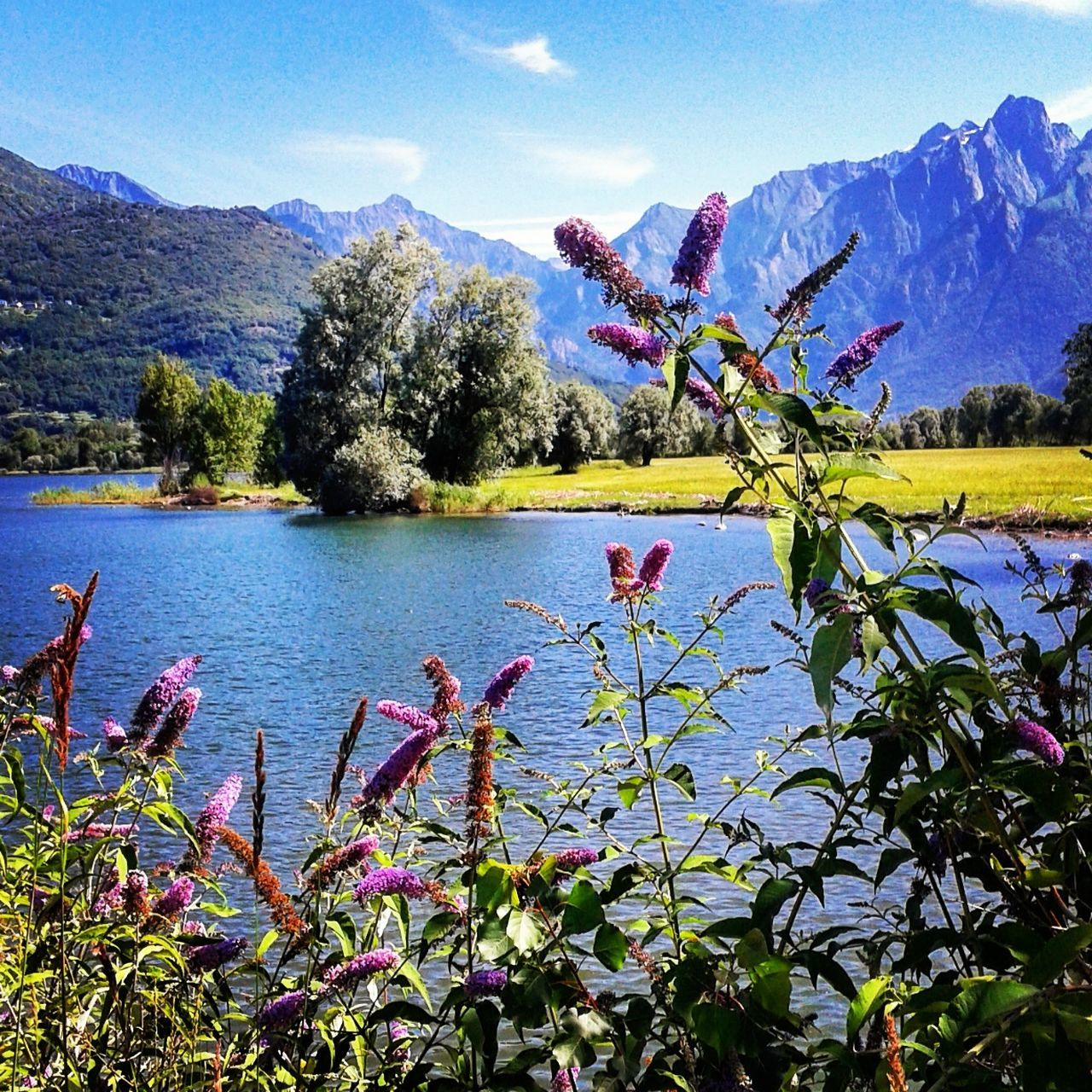 Lake Nature Colorful Mountain Lakecomo Landscape Skyporn Relaxing Happy