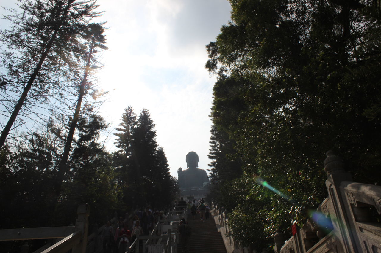 Tree Travel Destinations Travel Photography HongKong Tian Tan Buddha (Giant Buddha) 天壇大佛 Place Of Worship Beauty In Nature Buddha Buddhism Architecture Silhouette Cloud - Sky Sky Outdoors Day