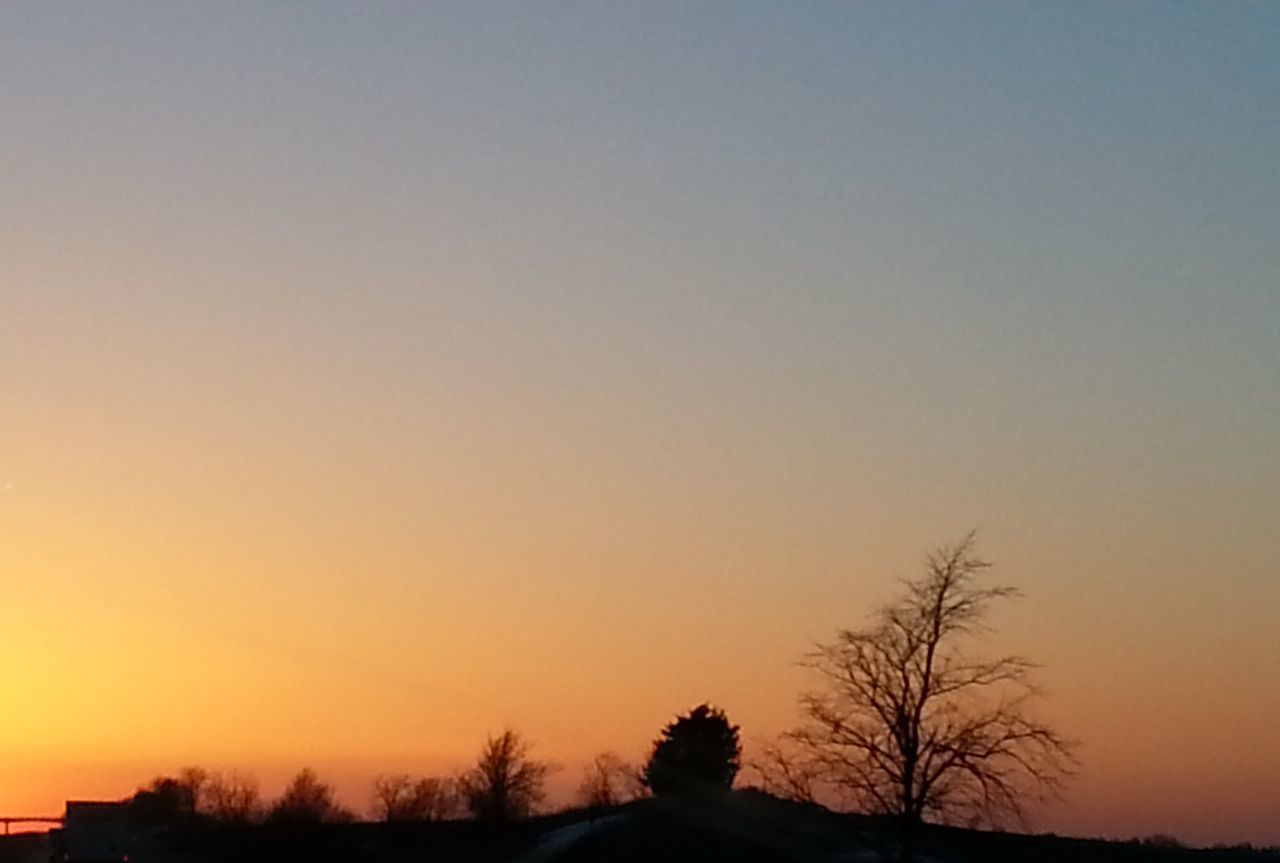 sunset, tree, silhouette, scenics, orange color, nature, beauty in nature, tranquil scene, tranquility, bare tree, sky, no people, clear sky, outdoors, landscape, day