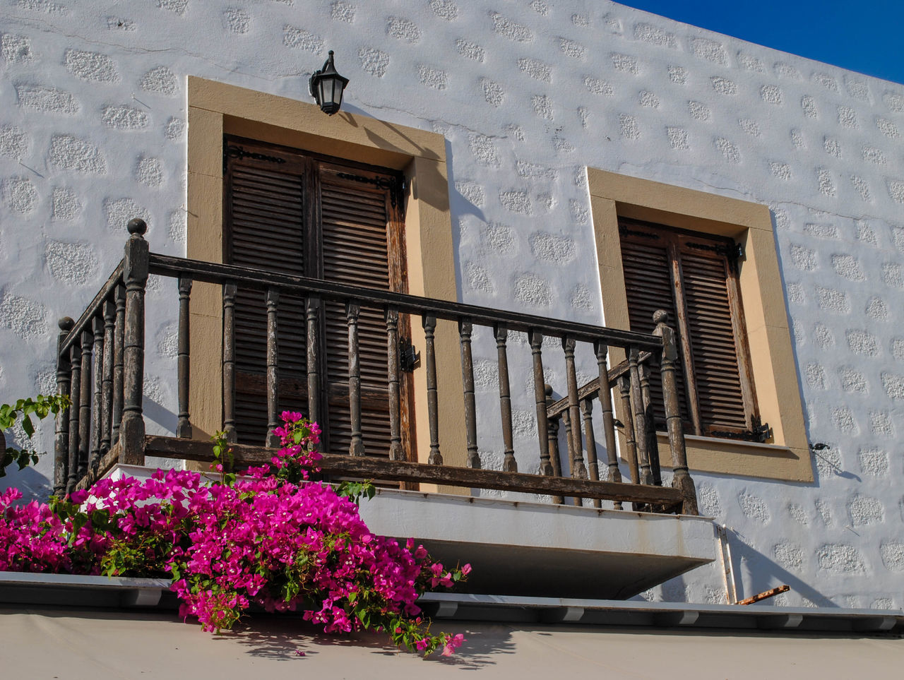 architecture, built structure, building exterior, window, low angle view, no people, day, outdoors, flower, window box, nature