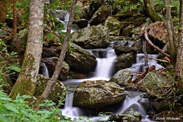 Waterfall Long Exposure Water EyeEm Team EyeEm Best Shots EyeEmNewHere Japan Landscape 岡山県 岩井の滝