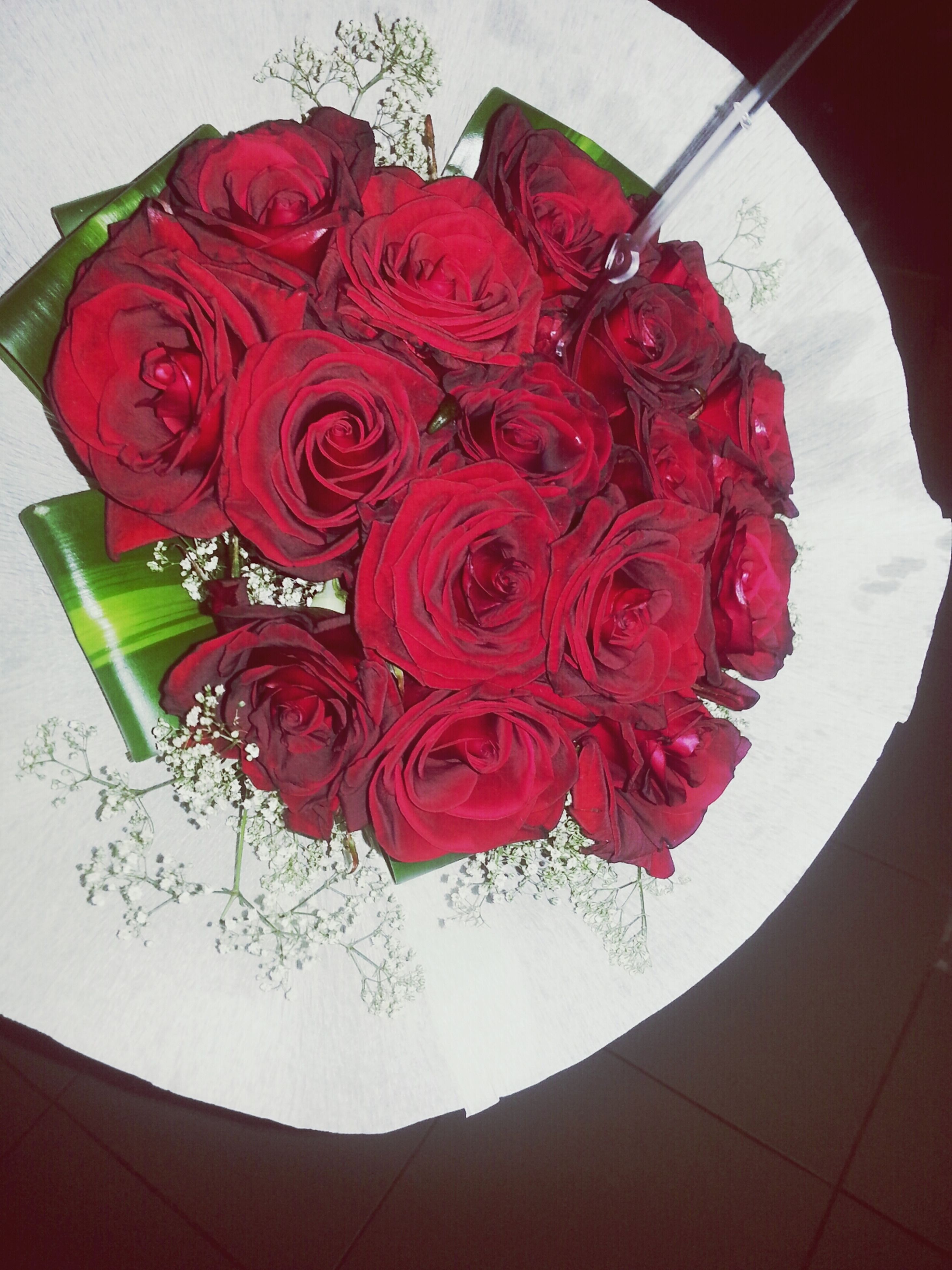 flower, red, indoors, freshness, petal, flower head, rose - flower, fragility, close-up, rose, table, bouquet, high angle view, vase, beauty in nature, decoration, still life, no people, pink color, nature