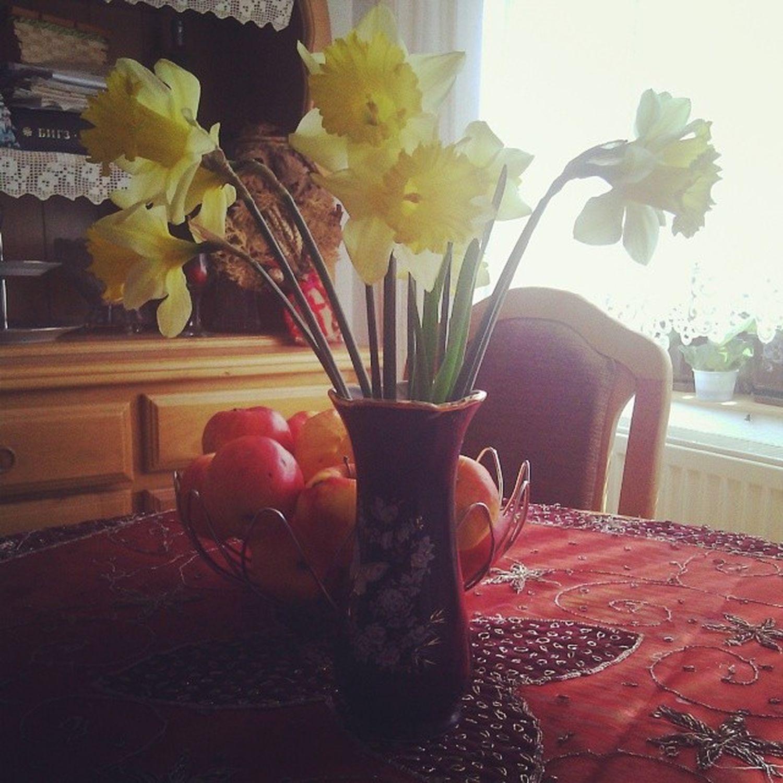 fresh flowers, fresh fruits... the spring is finally here Spring Wintergone Garden Green flowers apples fruit happy instamood
