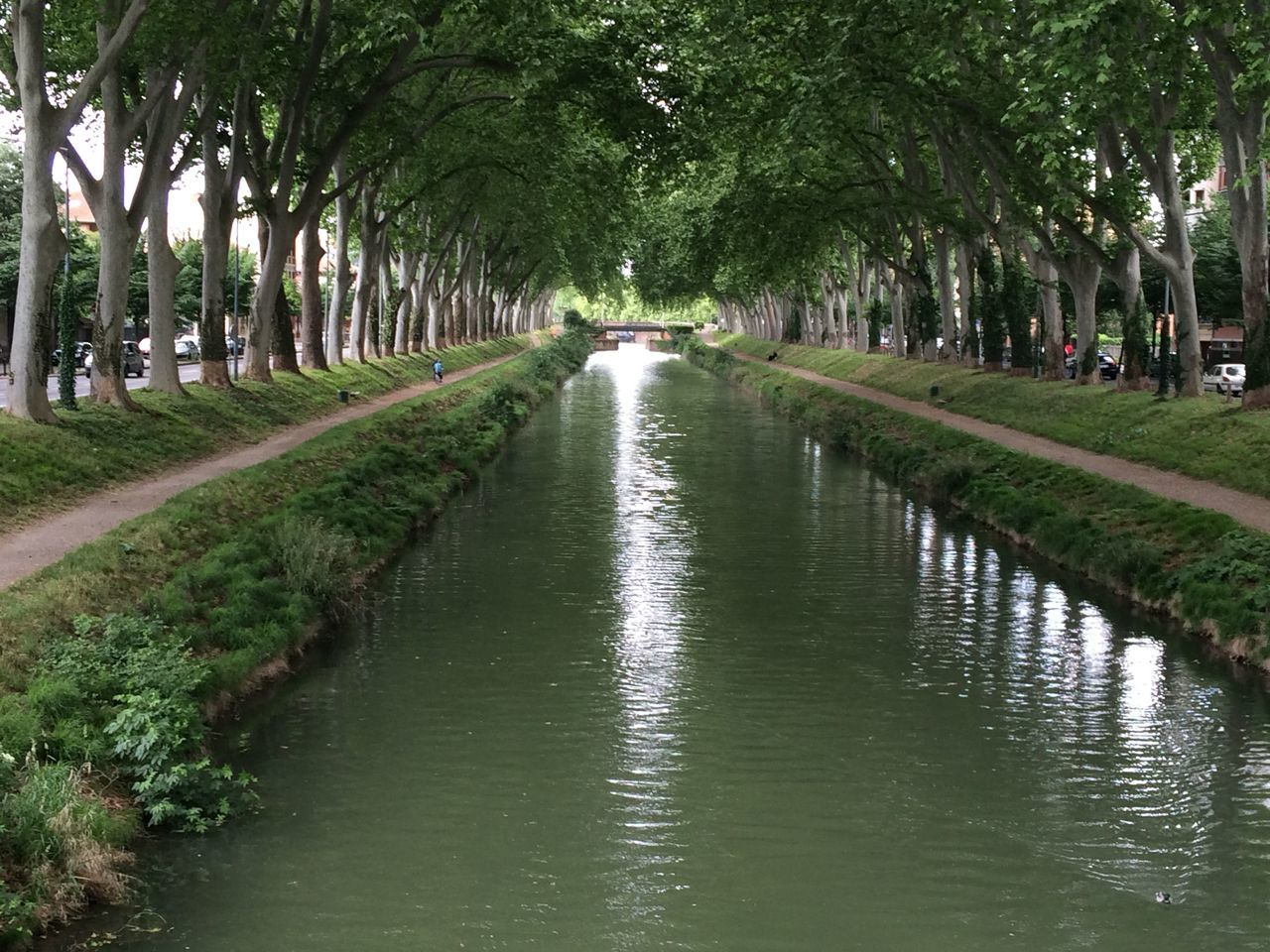 Toulouse Canal De Brienne France Trees Walking Around The Great Outdoors - 2015 EyeEm Awards Water Reflections Urban Geometry Taking Photos Path
