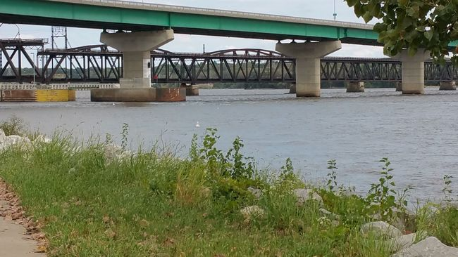 Architecture Built Structure Connection Bridge - Man Made Structure Architectural Column Water SUPPORT River Engineering Bridge Day Nature Outdoors Green Color Below No People Tranquility Tranquil Scene Scenics