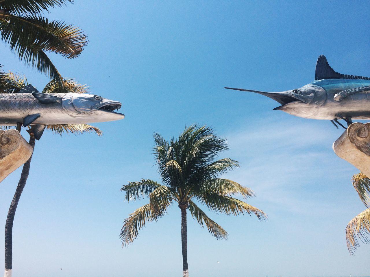 Twins Beach Traveling Islandlife Caribbean
