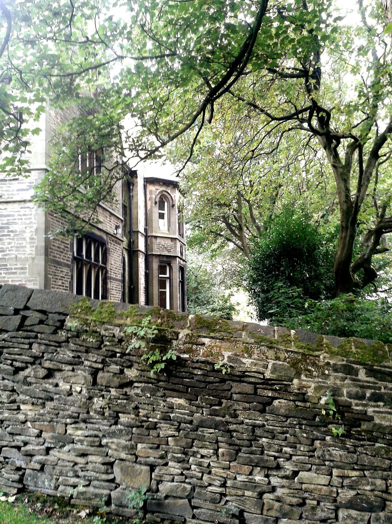 Bank Field Museum Park Fallbeauty Old Houses Theseoldbuildingsmakemehappy Stone Wall Gothic Peaceful Place Autumnbeauty Beautiful Stonework