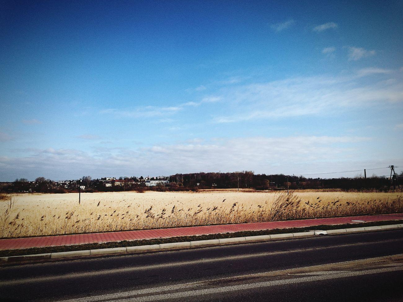 View Landscape Poland Hello World Sky Beautiful Nature Beautiful w Kazimierza Wielka Poland Świętokrzyskie