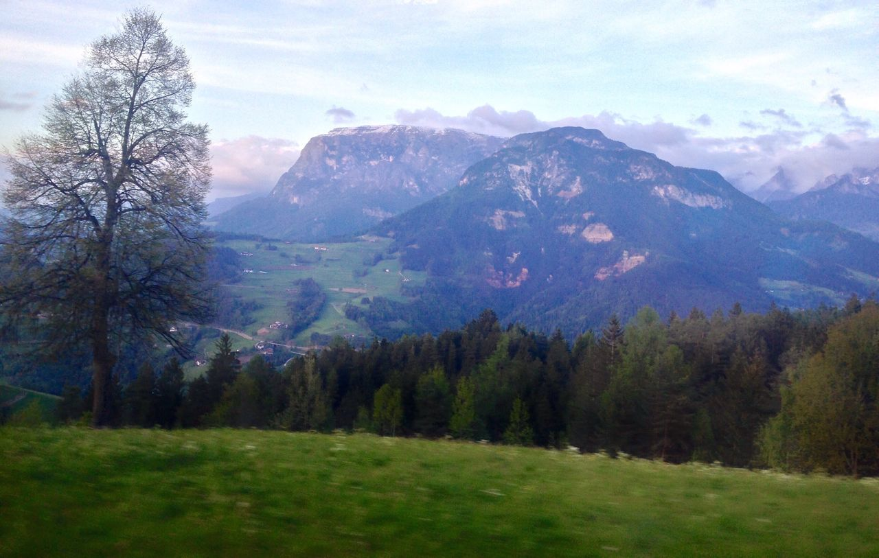 130/365 May 10 2017 One Year Project South Tyrol Forest Scilar Schlern Mountain Italy Collepietra Nature Beauty In Nature Tree Tranquil Scene Scenics Tranquility Sky No People Day Mountain Range Landscape Outdoors Scenery Grass
