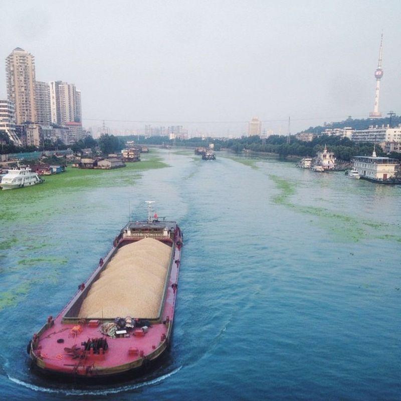 summer 武汉 Wuhan 汉江