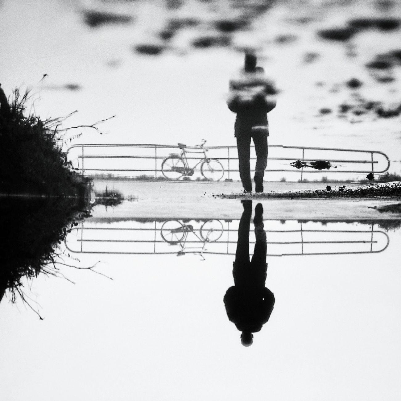 Reflection Blackandwhite Fog Selfportrait