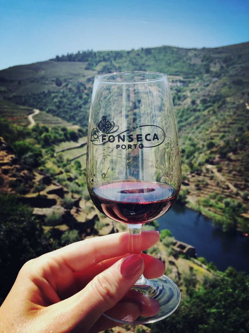 Portwine Dourovalley Douro  Portugal Wine Summer Wine Tasting Winery Fonseca Winery
