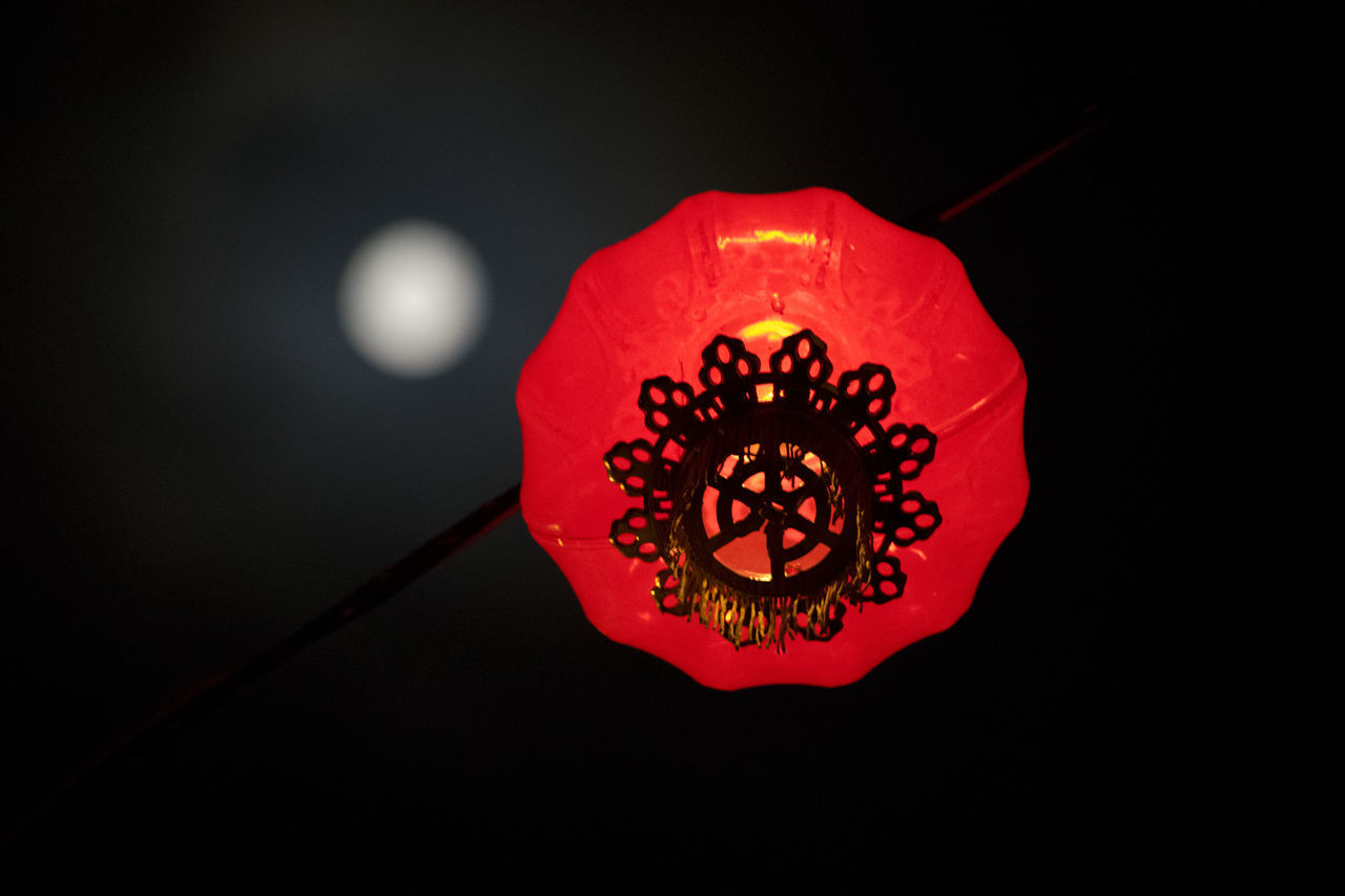 Red Flower Close-up Nature Petal No People Fragility Black Background Flower Head Beauty In Nature Freshness Maroon Outdoors Night Photography Hanging Lantern Cultures Chinese Lantern Nightphotography Moon Nightshot Night Lights Check This Out Streetphotography Red