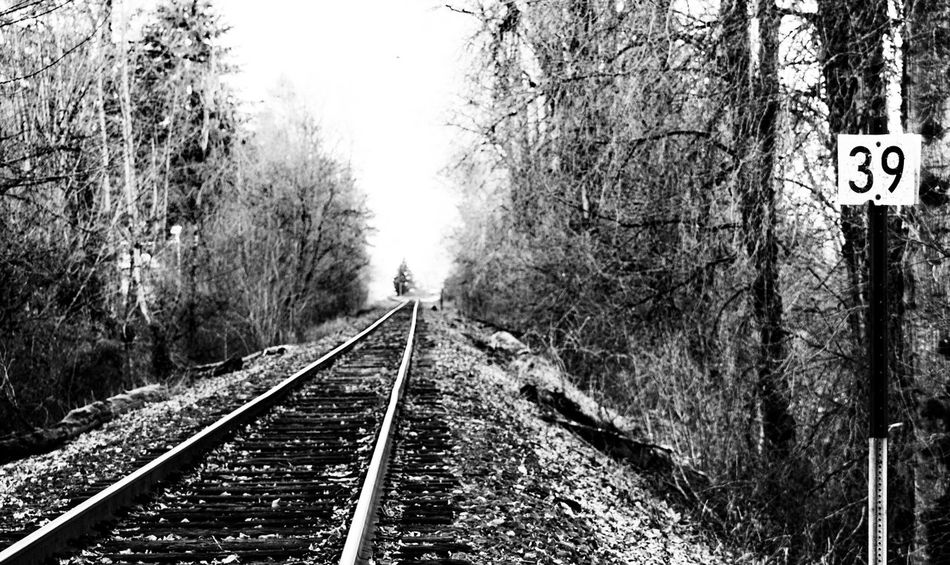 While looking forward,.....remember that th Shaping Thoughtse track goes both ways Train Tracks Tracks Railroad Track Railway Railroad Iron Looking Forward Eyem Gallery Oregon Rails Railroad Tracks RailRoadTracks Darryn Doyle Check This Out Eye4photography  Blackandwhite Taking Photos Connection Moving Forward  Landscapes With WhiteWall