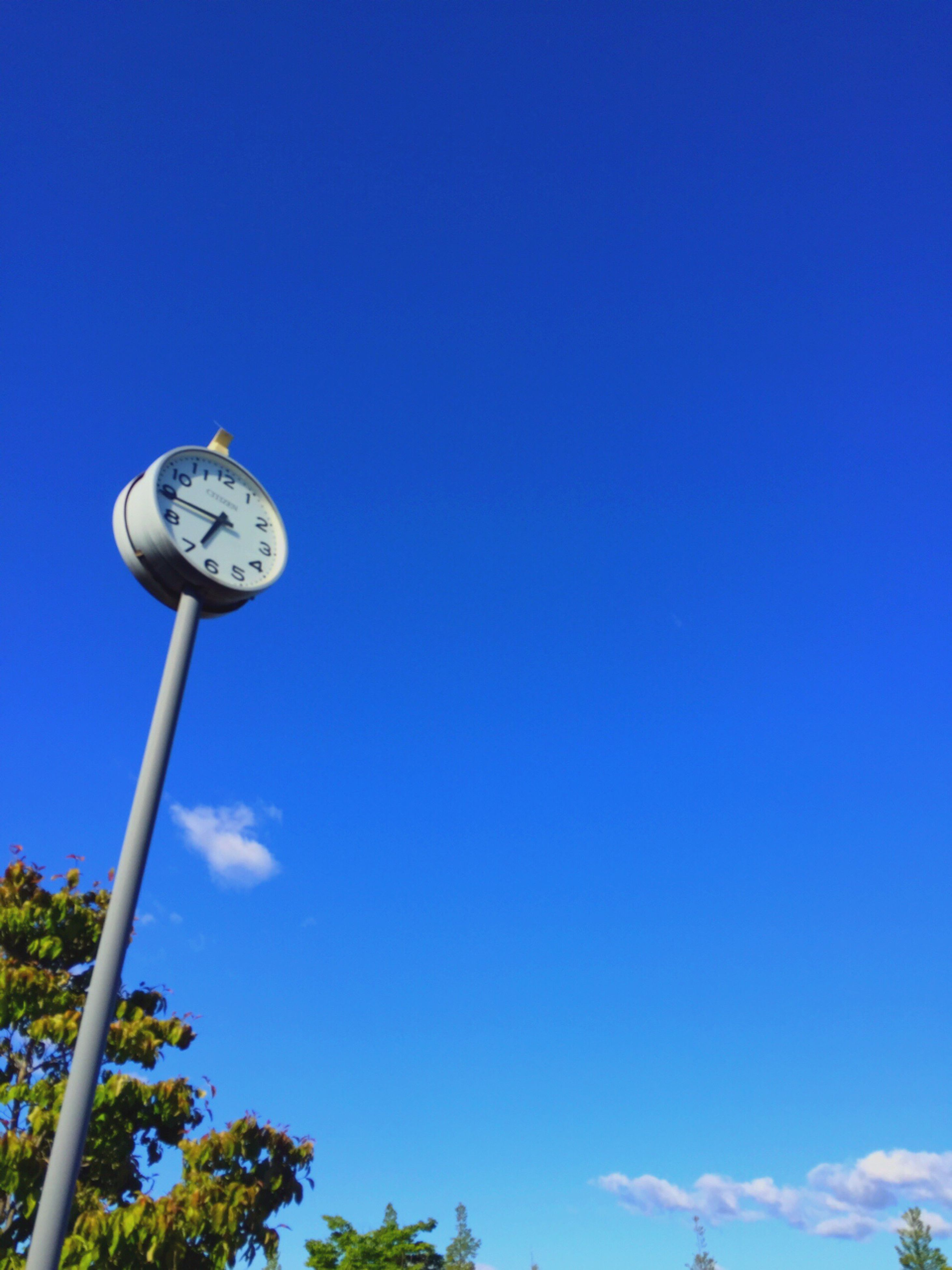 blue, low angle view, copy space, clear sky, day, no people, outdoors, sky, clock, time, nature, tree