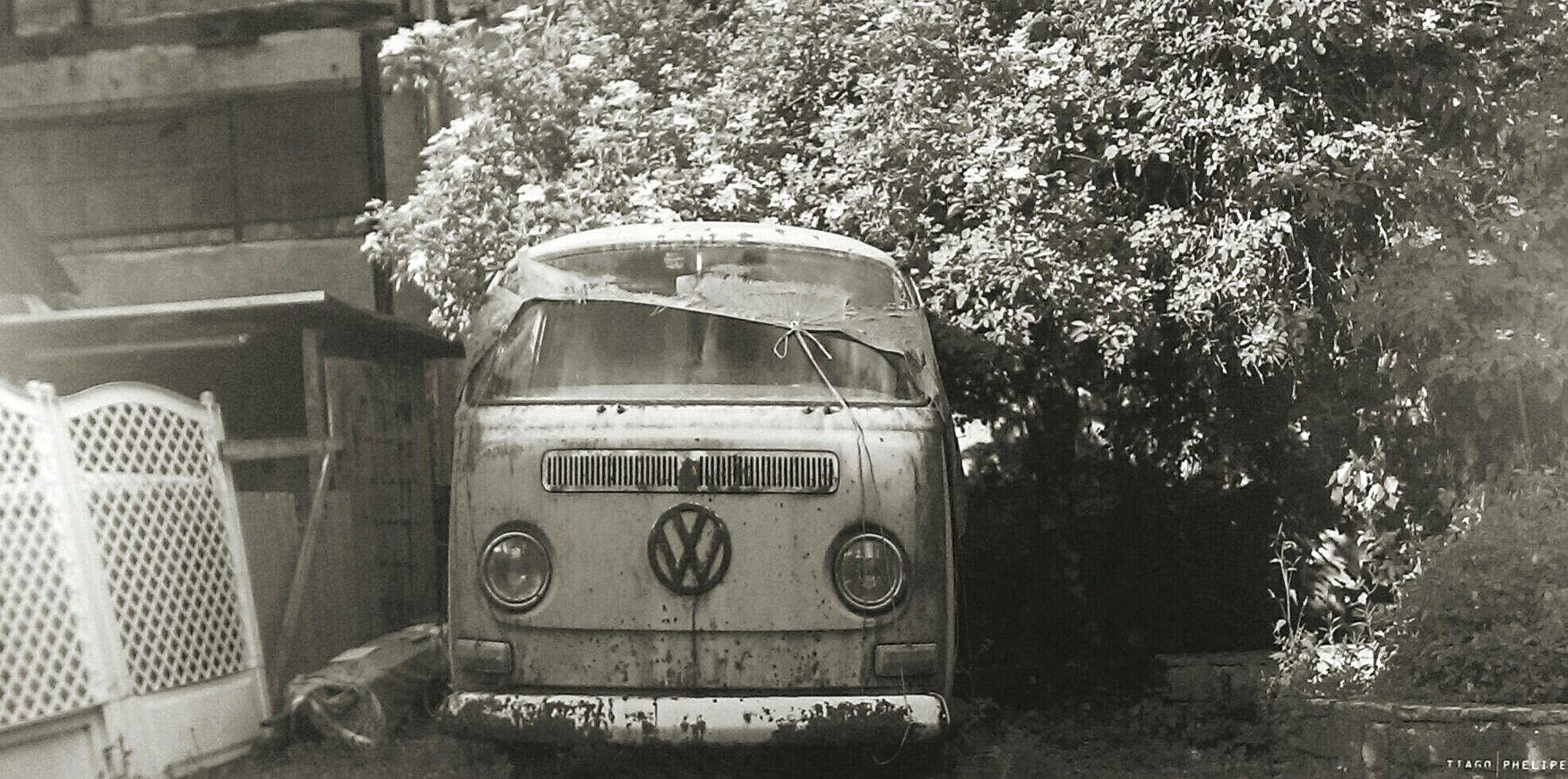 Dream VW Car Bus Golden Oldie Picture My Dream My Love