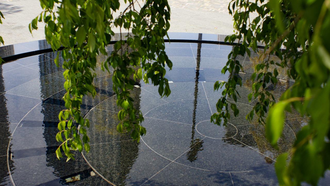 Water Day Outdoors Tree Takumar 28mm F3.5 Nex5 City City Life