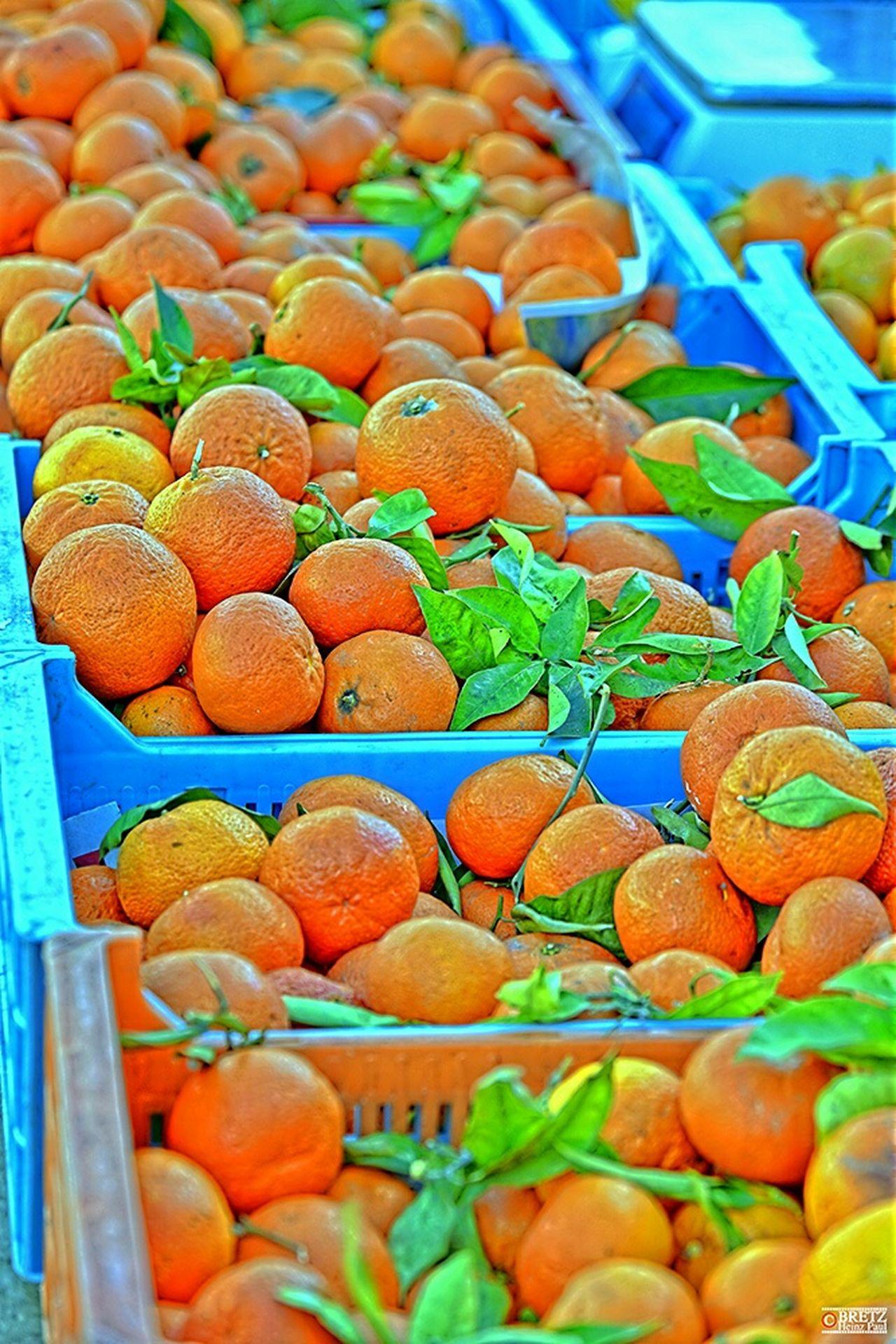 Mandarinen Mallorca Alcudia Obst Orange Mandarinen