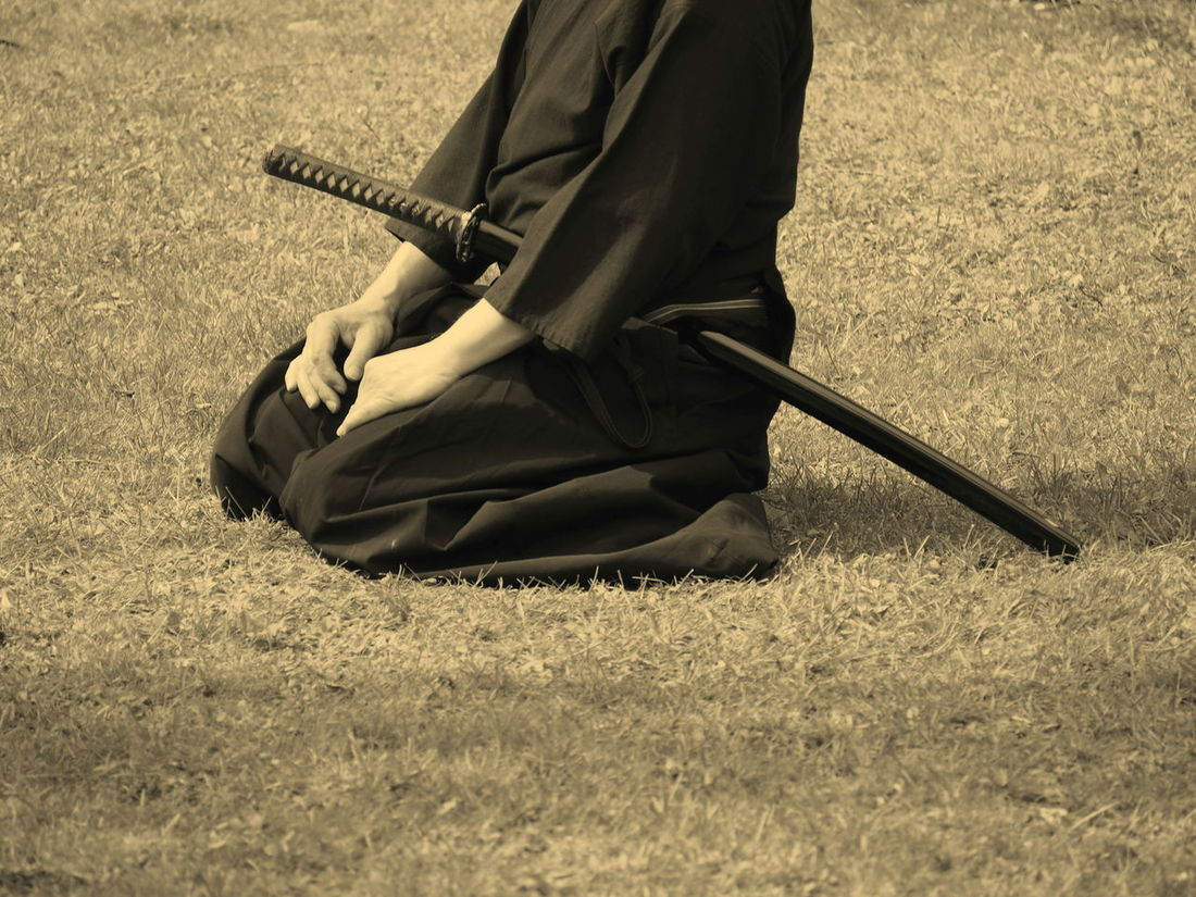 Day Field Full Length Grass Holding Human Hand Iaido Music Musical Instrument Musician One Person Outdoors People Playing Real People Sitting Resist Resist