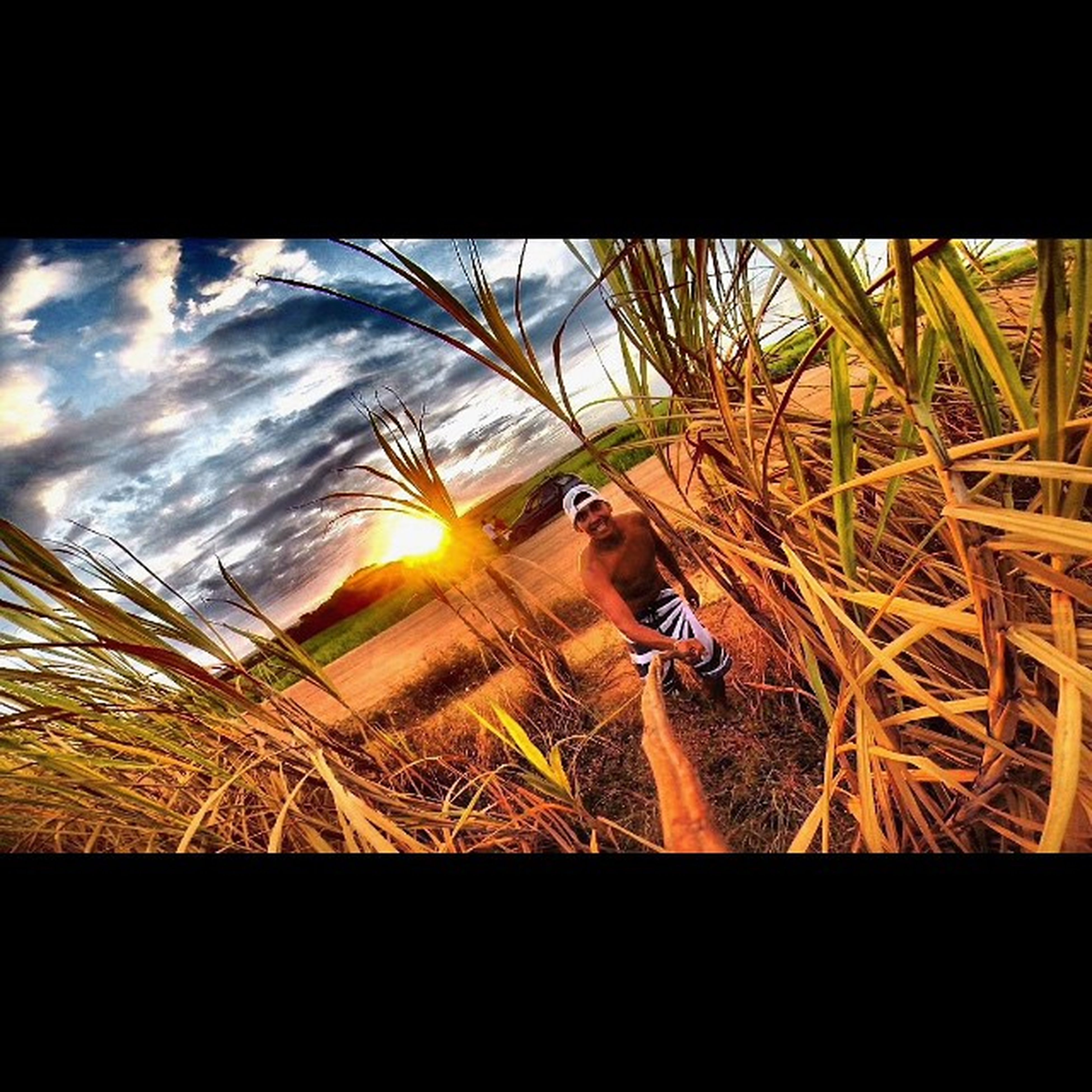 leisure activity, lifestyles, sunset, bicycle, transfer print, land vehicle, sunlight, auto post production filter, sun, transportation, field, mode of transport, sky, holding, men, lens flare, young adult, outdoors
