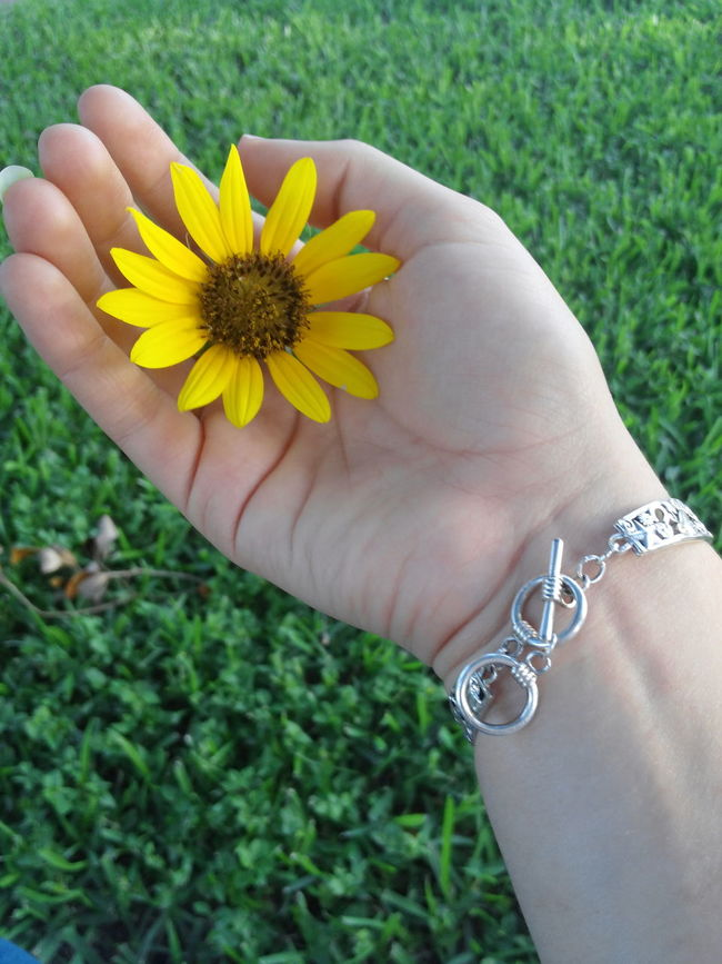 Sunflowers Human And Nature Hands Bracelet Flowers Connected With Nature Nature Outdoors Planting Flowers Be Green  Planting Corpus Christi, Tx
