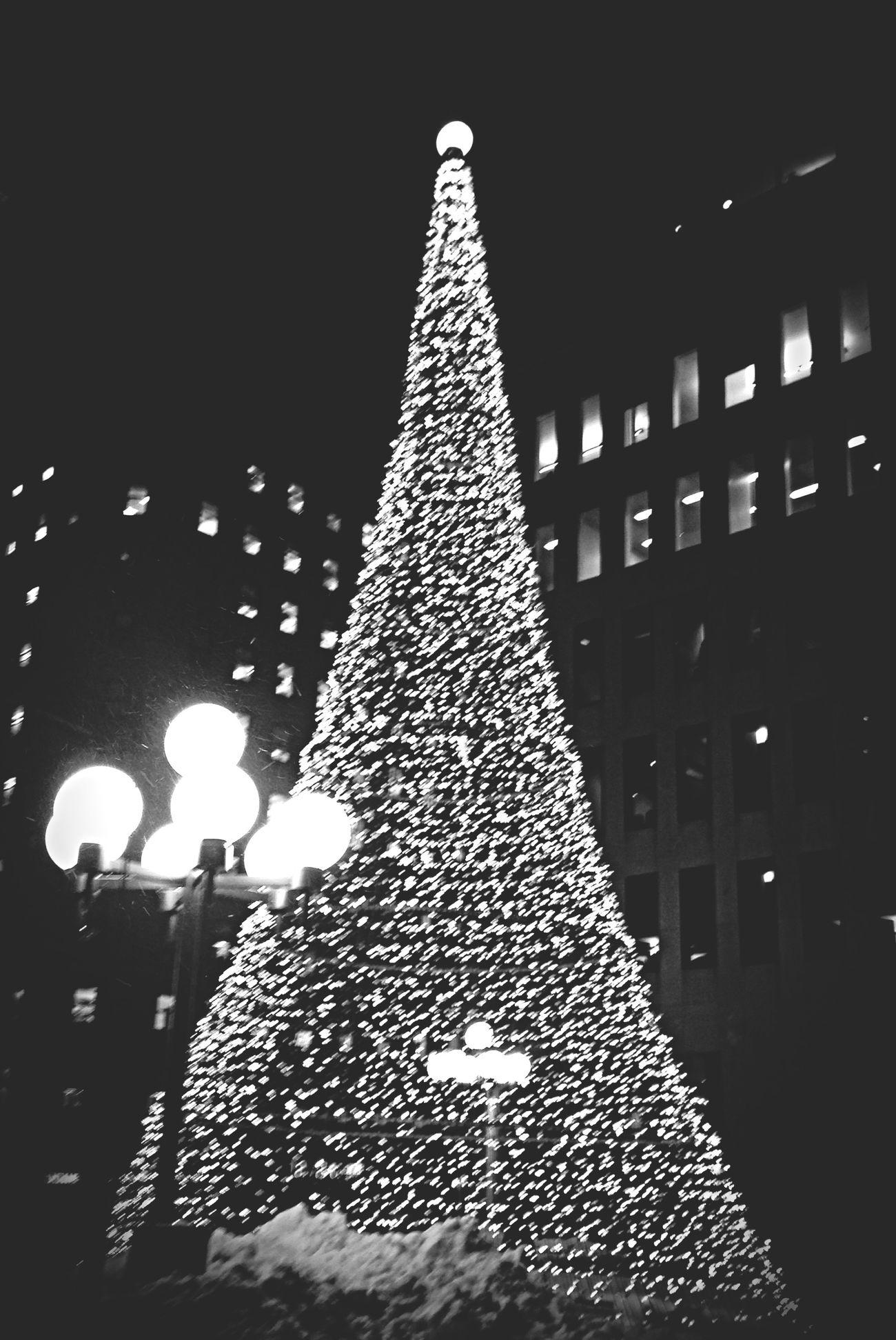 Le sapin de Place Ville Marie Christmas Blackandwhite Montréal Quebec