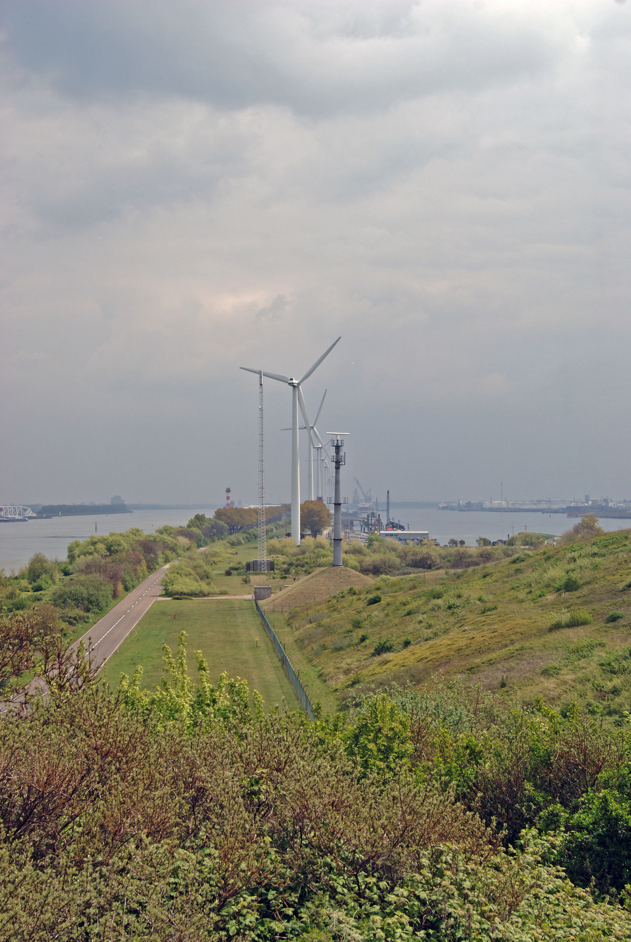 Alternative Energy Beauty In Nature Cloud - Sky Day Field Fuel And Power Generation Grass Horizon Over Water Industrial Windmill Landscape Nature No People Outdoors OverviewPoint Rotterdam Harbor Rotterdam Haven Rozenburg Rural Scene Scenics Sky Water Wind Power Wind Turbine Windmill