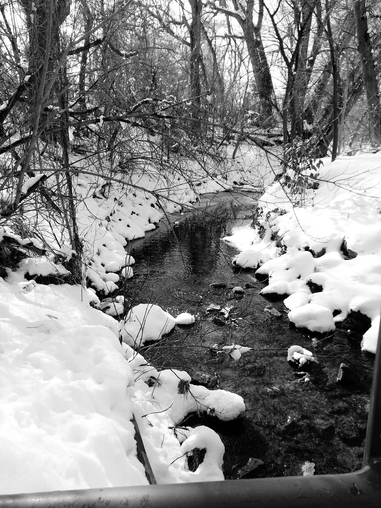 It's Cold Outside Snow Stream Stopping By Woods