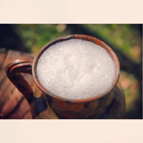Pulque el néctar de los dioses Mexican Drink Visitmexico Drinking bebida popular mexicana