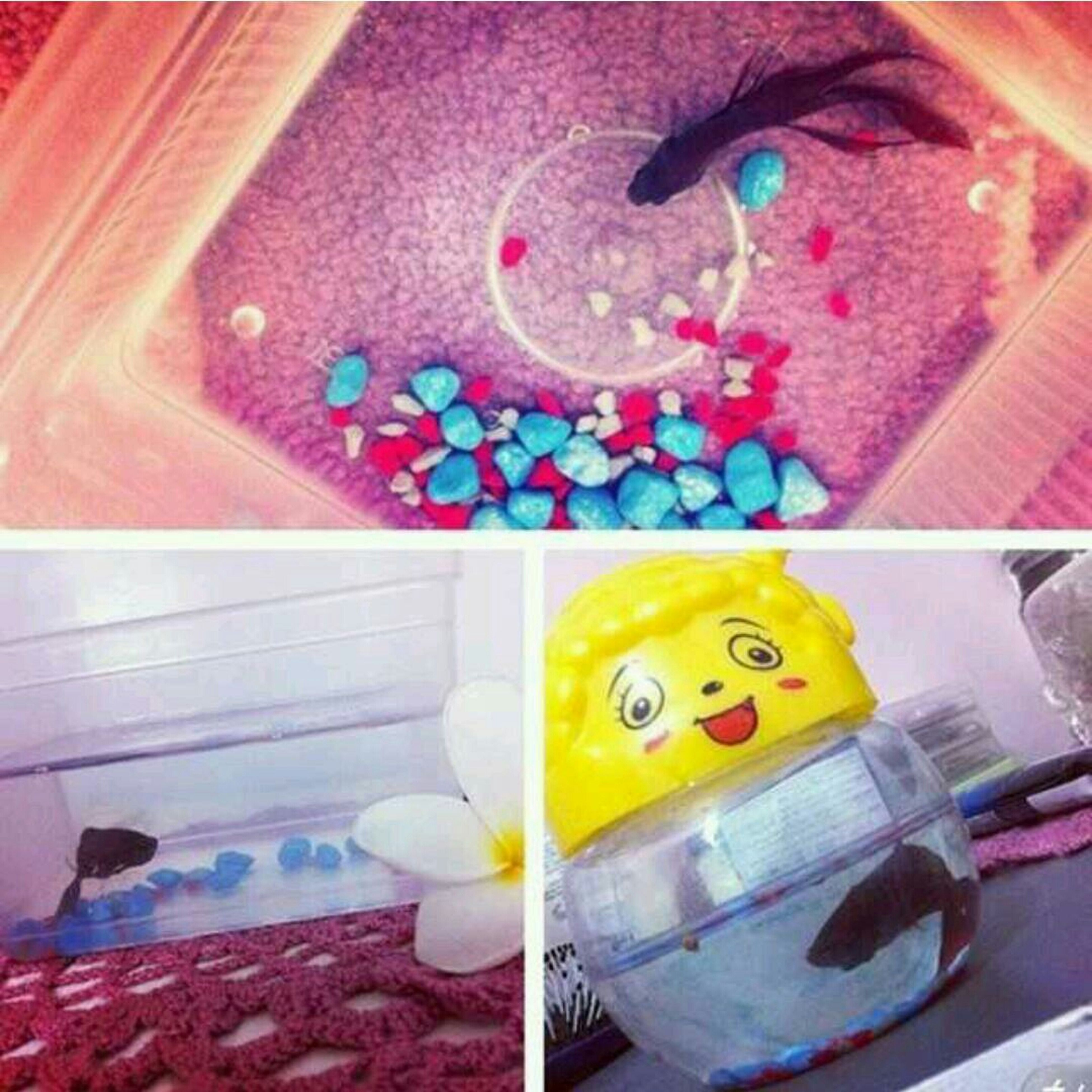 indoors, multi colored, still life, close-up, yellow, colorful, art and craft, high angle view, creativity, no people, art, plastic, blue, table, toy, sweet food, red, pink color, reflection, day