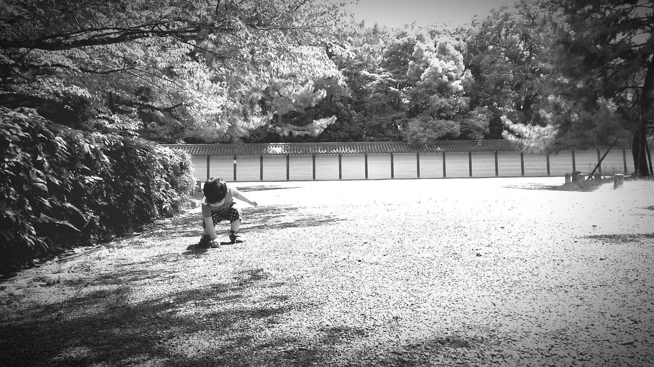 [16.05.17] これは。 Black And White Black & White Japan Monochrome Child People Enjoying Life Cool Japan Person Pixlr 京都御苑 Walking Park Japanese  Nature Day Outdoors Tree