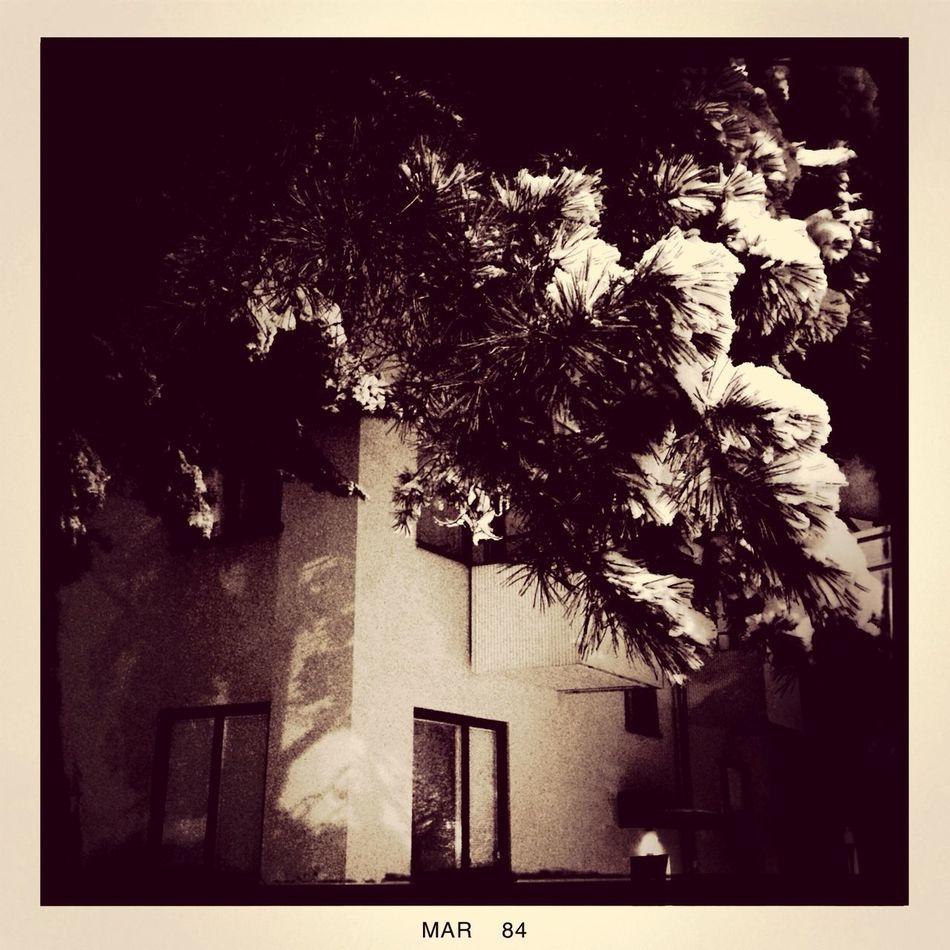 Black Black & White Monochrome Light And Shadow